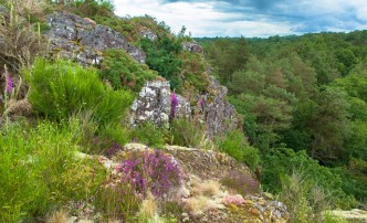 La vallée du Canut - bron: www.ille-et-vilaine.fr